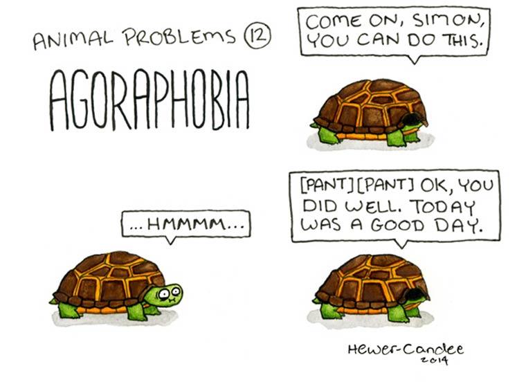 probleme-animal-16