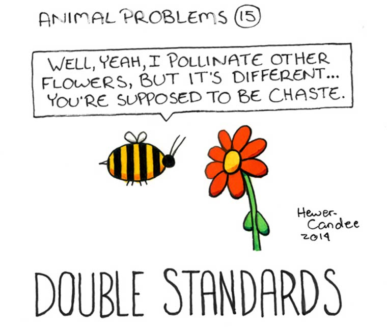 probleme-animal-19