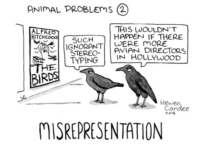 probleme-animal-24