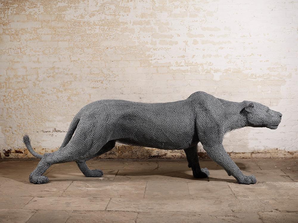 animal-grillage-03