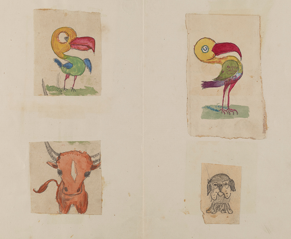 enfant-dessin-darwin-manuscrit-origine-espece-11