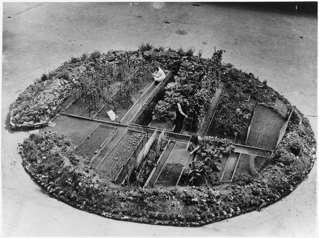 jardin-victoire-cratere-bombe-londres