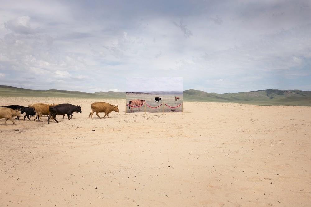 mongolie-mise-scene-desert-aride-04