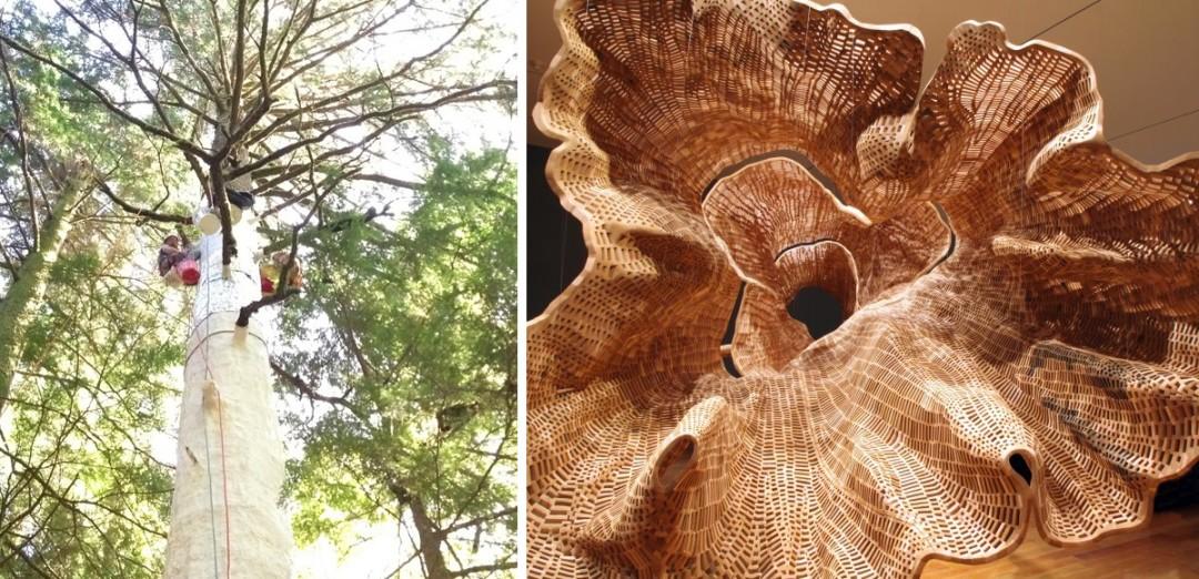 moule-arbre-geant-04