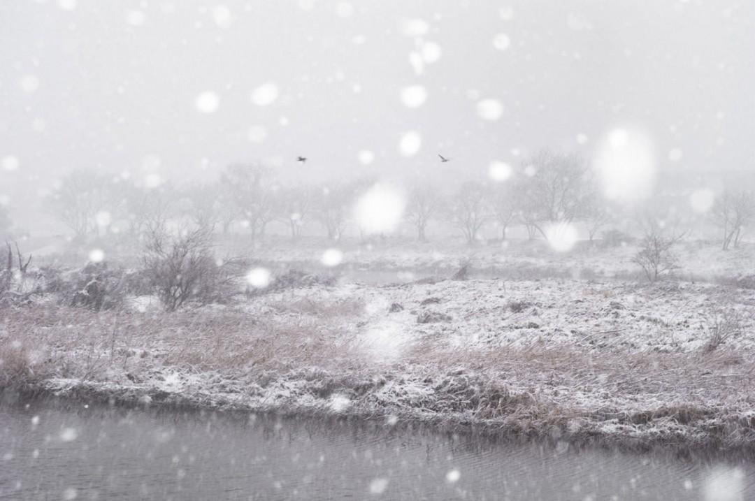 photo-neige-03