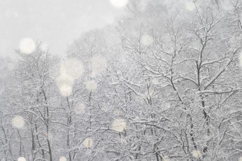 photo-neige-05