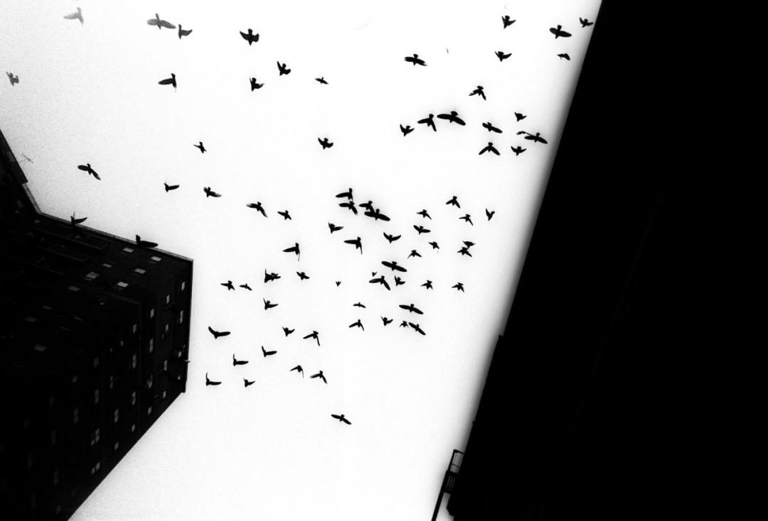 rue-nuit-newyork-07