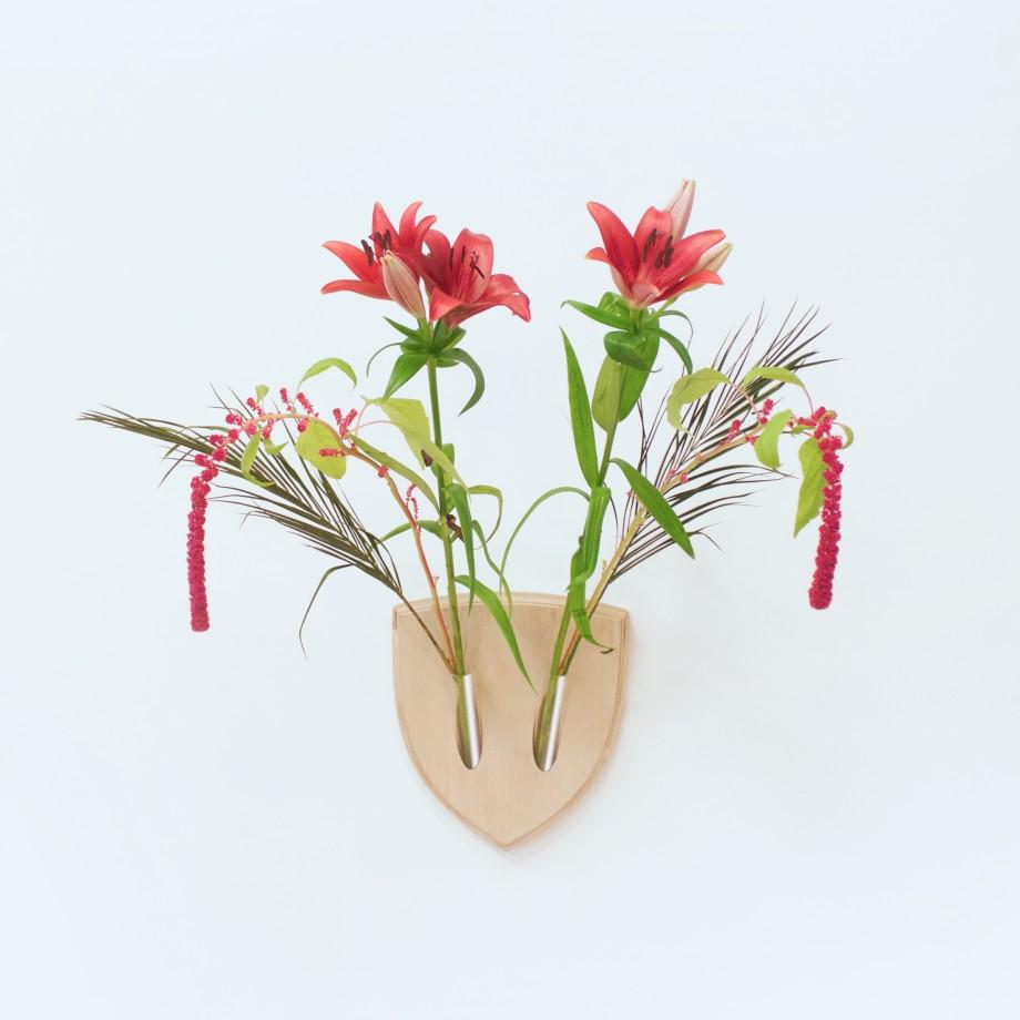 trphe-botanique-01