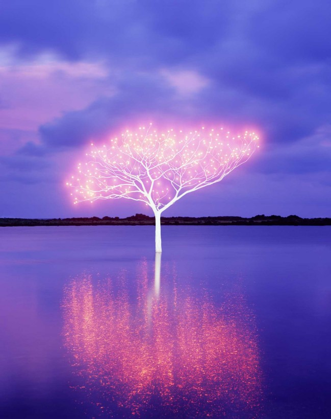 Lee-Jeong-Lok-arbre-lumiere-01