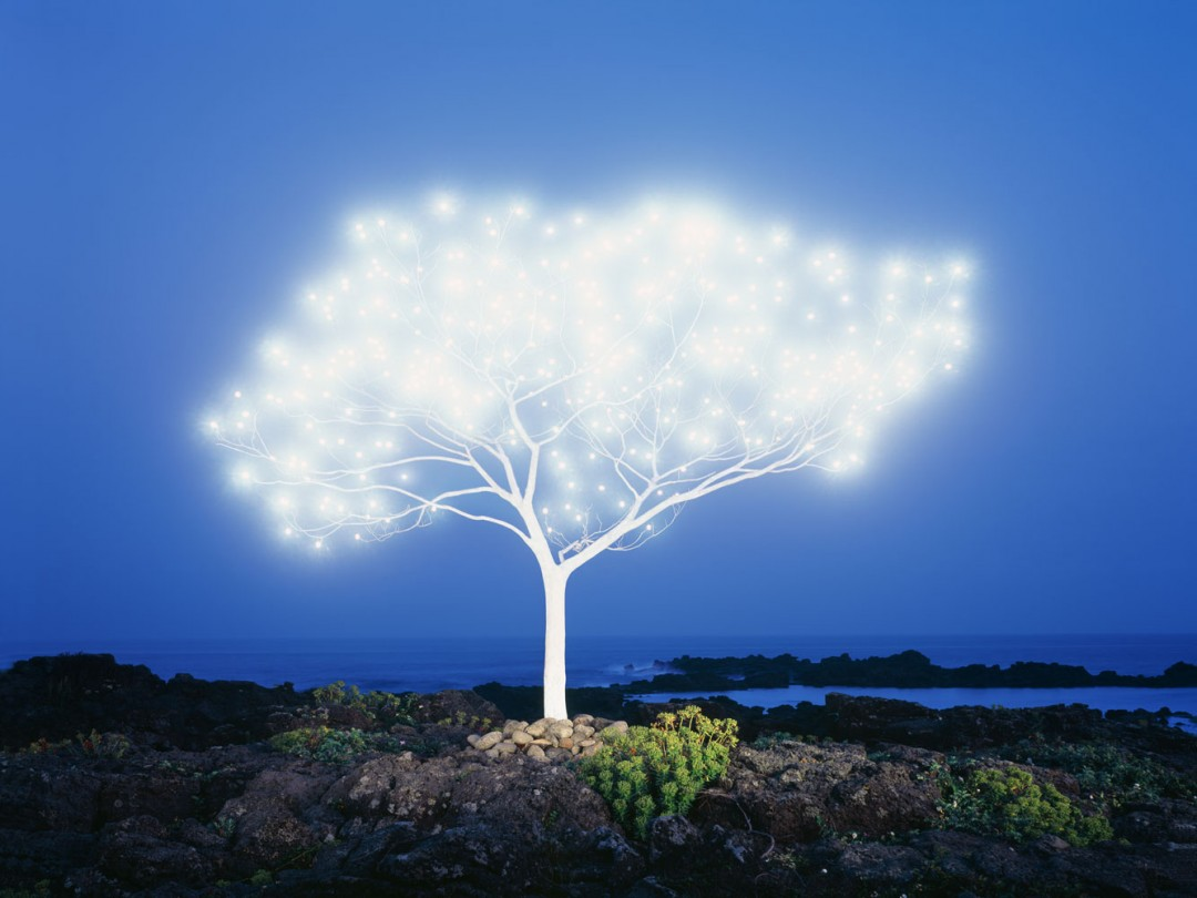 Lee-Jeong-Lok-arbre-lumiere-03