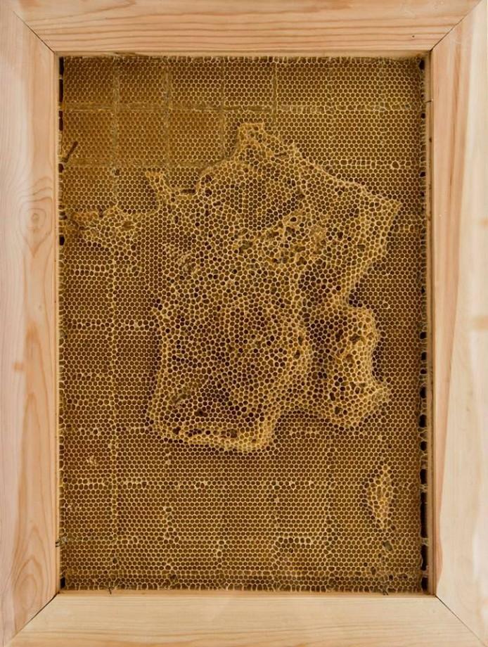 carte-abeille-cire-ruche-01