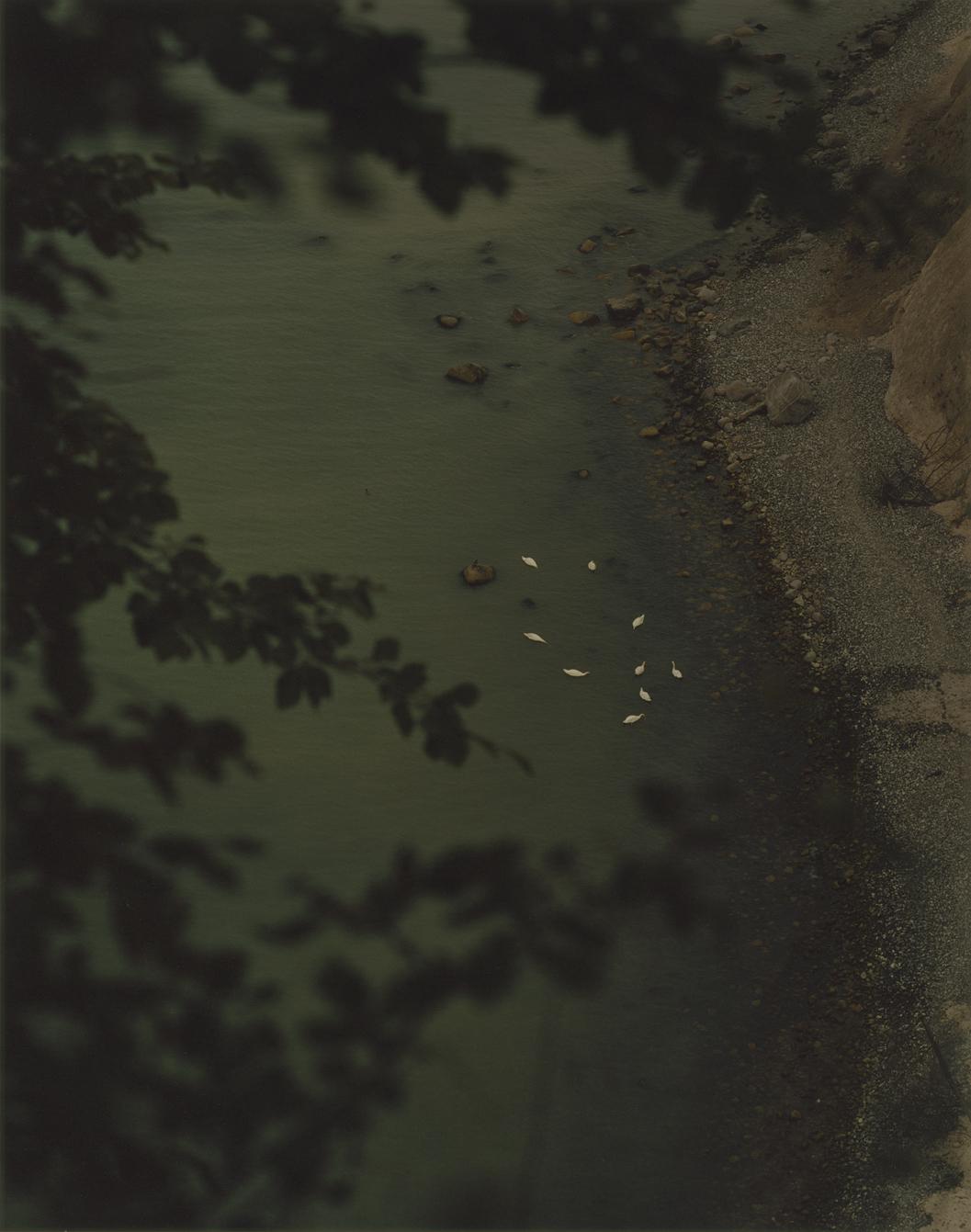 jasmund-05