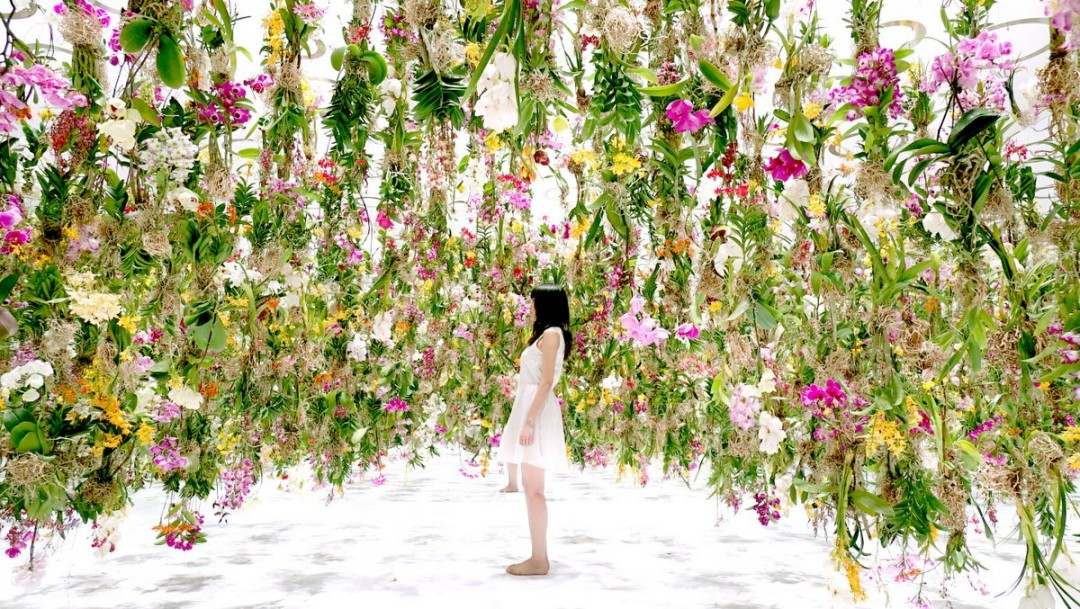 vague-fleur-07