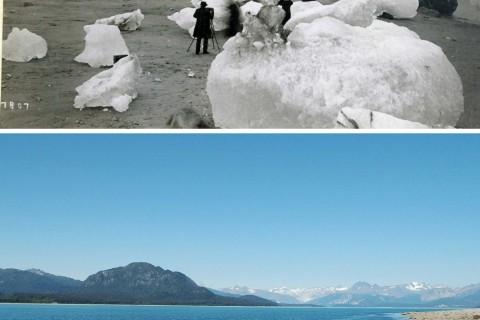 01-muir8ab-recul-glacier-alaska