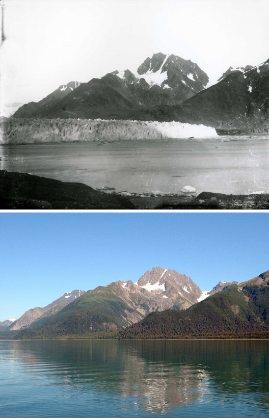 02-muir7ab-recul-glacier-alaska