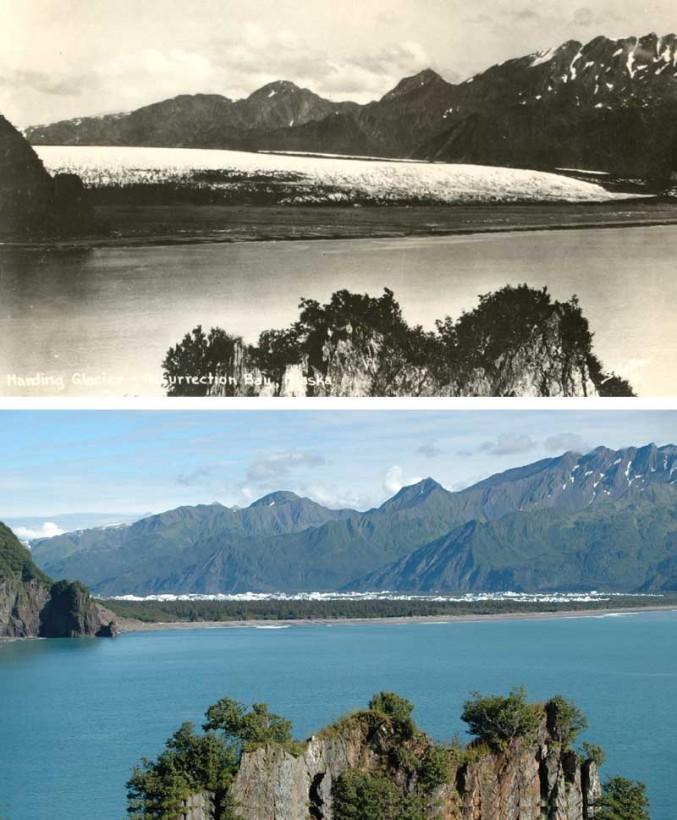 11-kf21bearab-recul-glacier-alaska