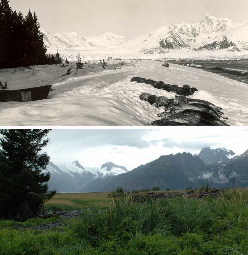 23-northwestern04-recul-glacier-alaska