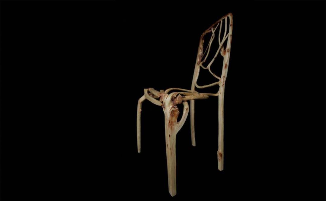 chaise-pousse-05