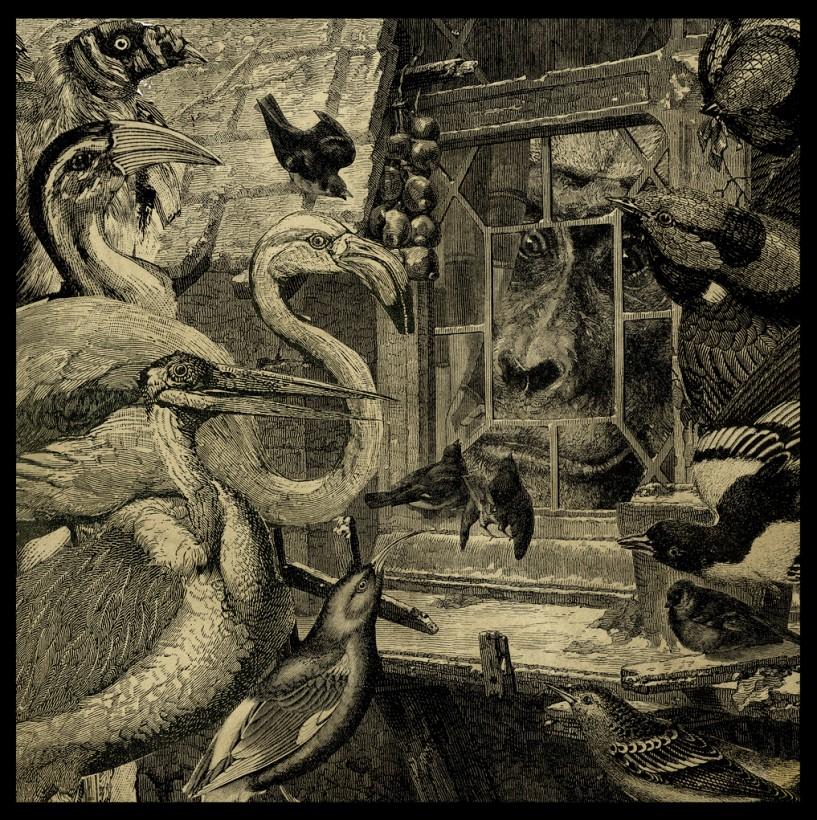collage-fantastique-illus-graphisme-ancien-06