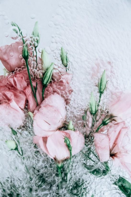 fleur-eau-01