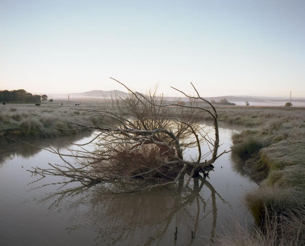 paysage-brume-01