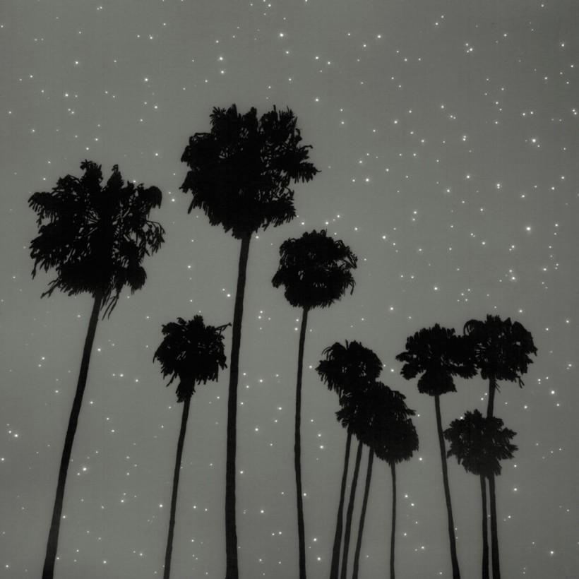 photogramme-nuit-paysage-vanessa-marsh-04