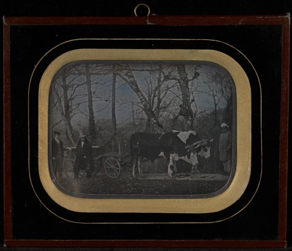 Jean-Gabriel_Eynard-suisse-daguerreotype-cheval-02