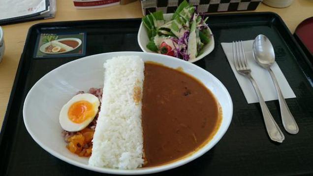 barrage-riz-japon-13