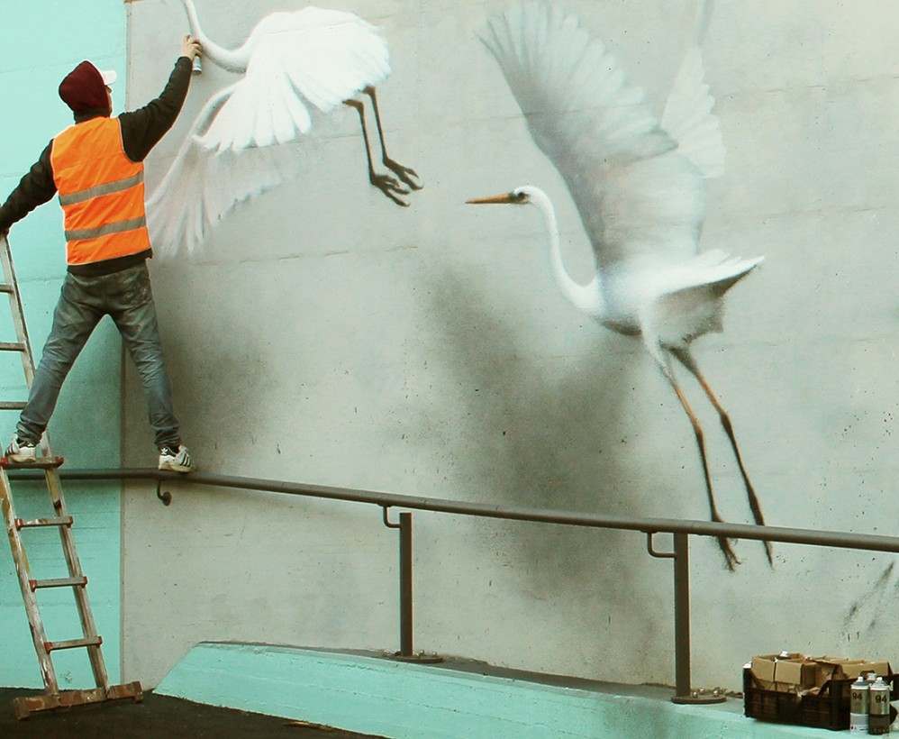 eron-fresque-italie-oiseau-04
