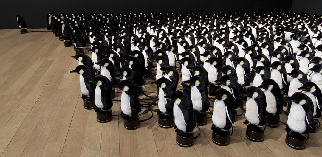 pingouin-rozin-02