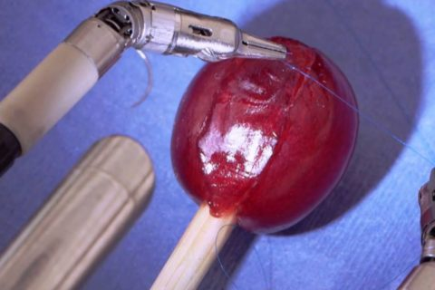 Suturer un grain de raisin avec un robot chirurgical