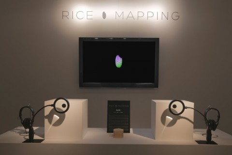 De la projection vidéo sur un grain de riz