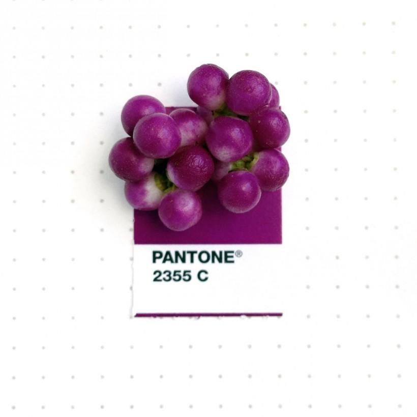 pantone-petit-objet-couleur-05