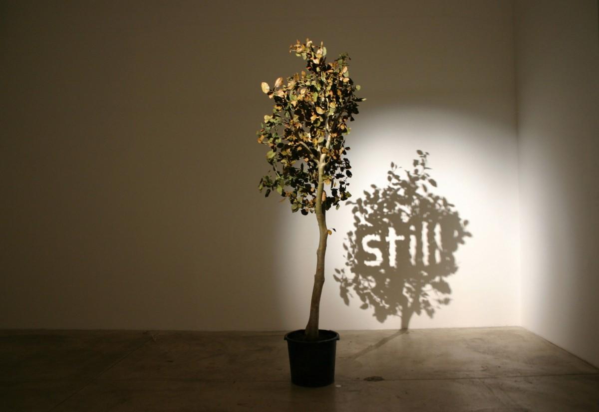 art-fil-ombre-11