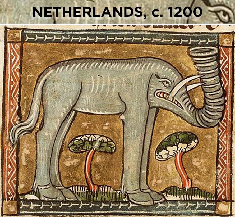 elephant-dessin-europe-vieux-04