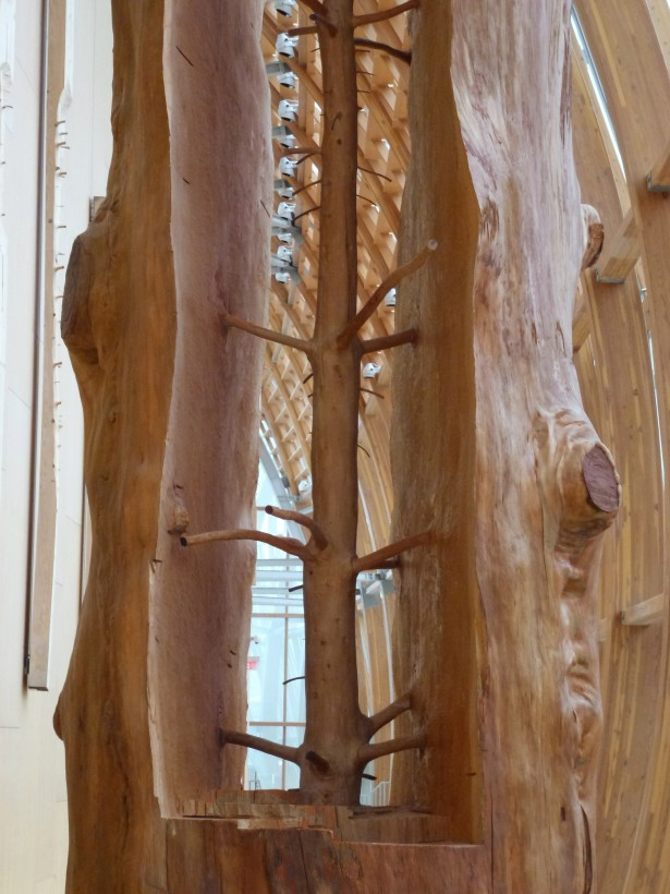 giesupe-penone-arbre-02