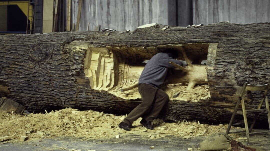 giesupe-penone-arbre-04