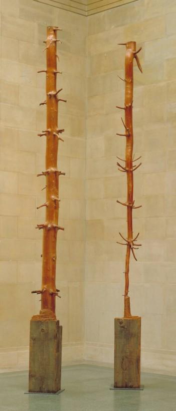 Tree of 12 Metres 1980-2 Giuseppe Penone born 1947 Purchased 1989 http://www.tate.org.uk/art/work/T05557