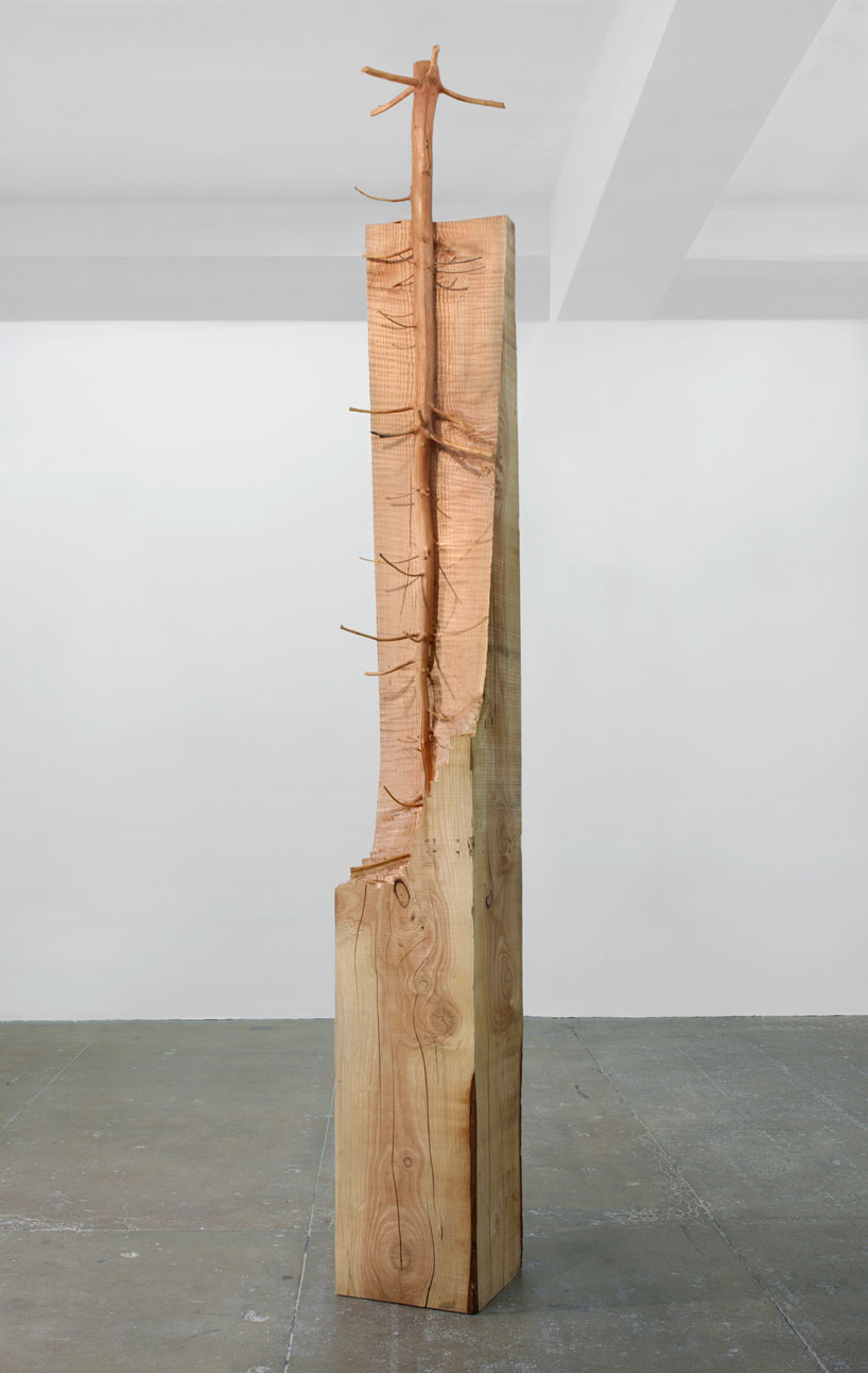 Giesupe-penone-arbre-06