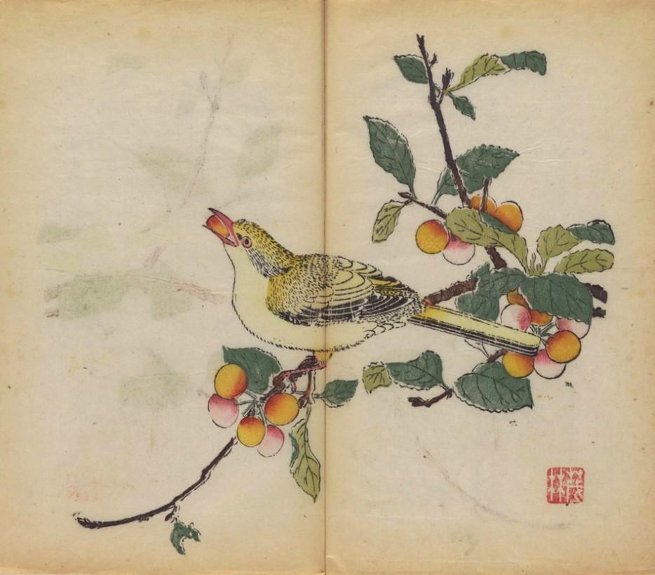 plus-vieux-livre-imprime-couleur-01