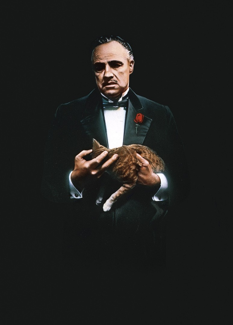 28 - The Godfather
