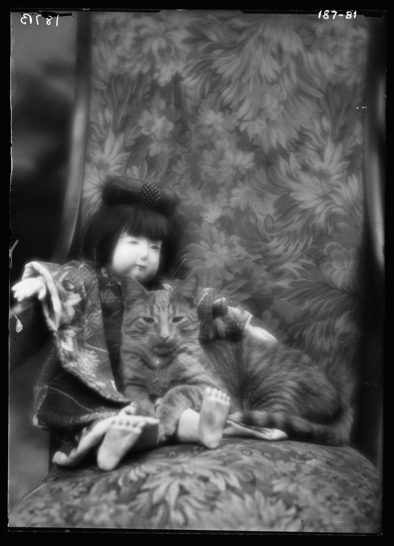31-arnold-genthe-buzzer-chat-Buzzer-the-cat-portrait-photograph-1912