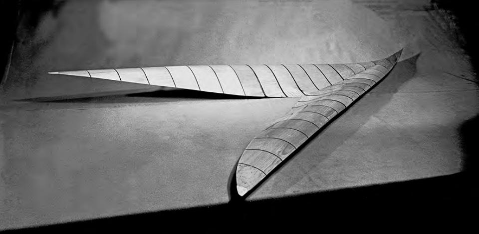 nasa-logo-boomerang-origine