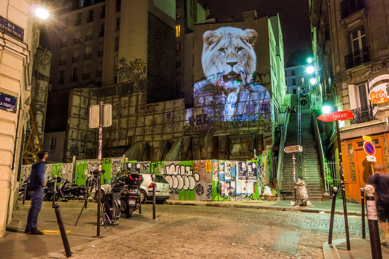 safari-projection-urbaine-paris-04