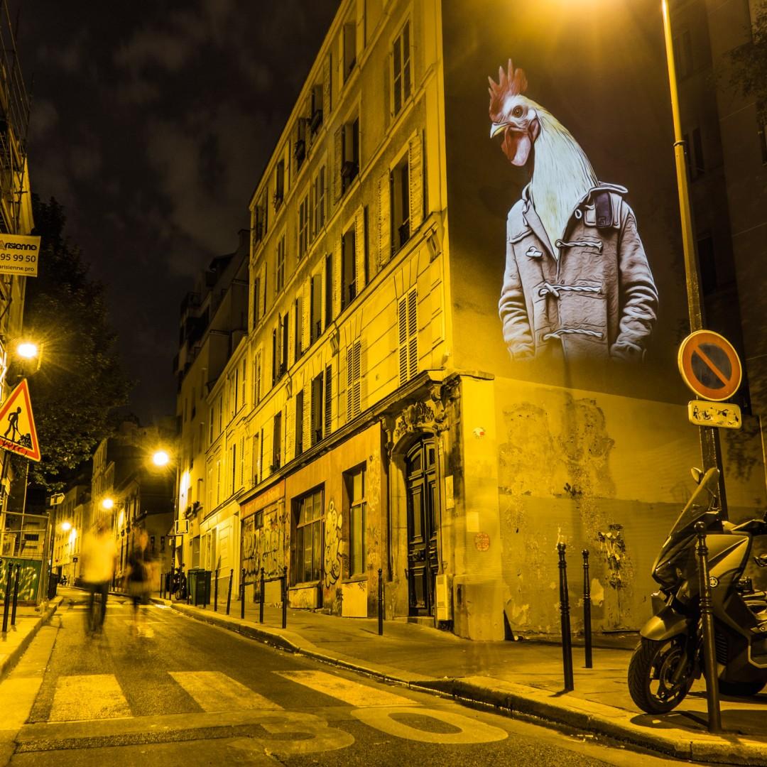 safari-projection-urbaine-paris-14