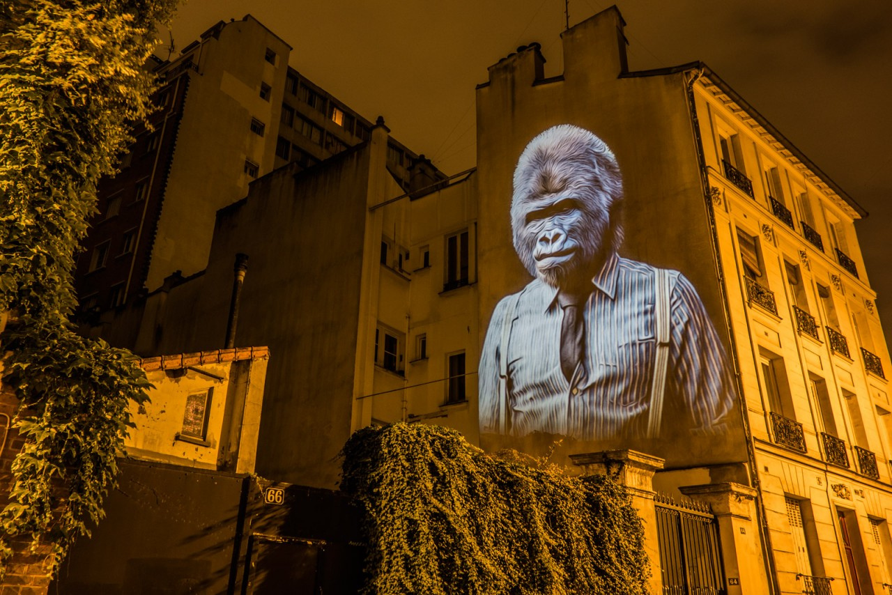 safari-projection-urbaine-paris-15