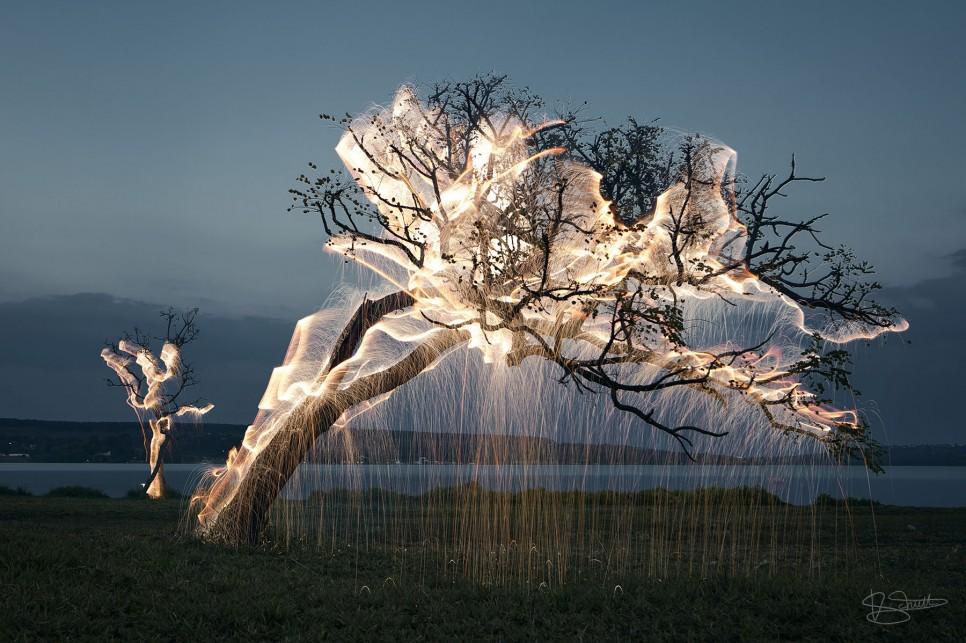 arbre-feu-lighhtpainting-01