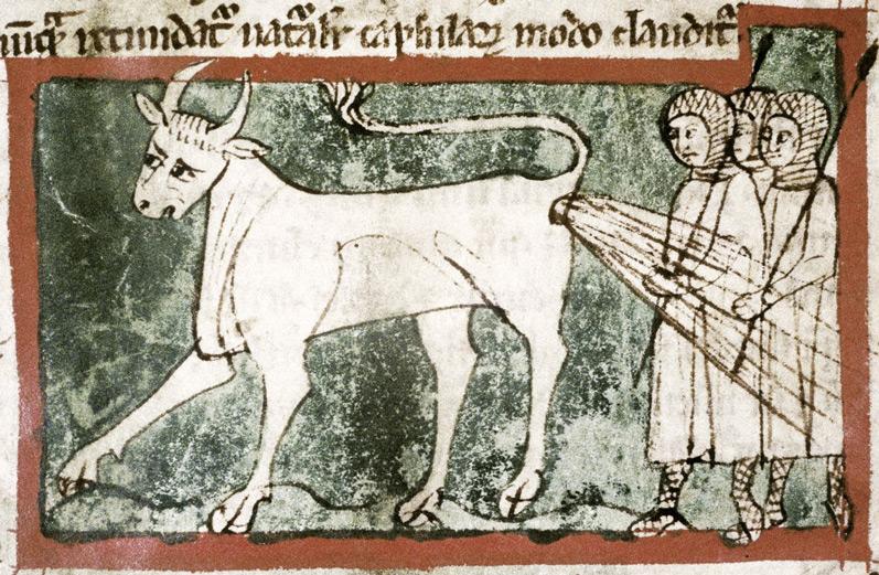 bonacon-animal-mytique-moyenage-03