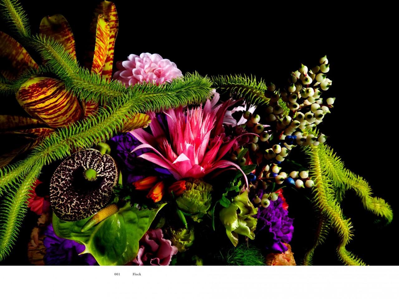 encyclopedie-fleurs-06