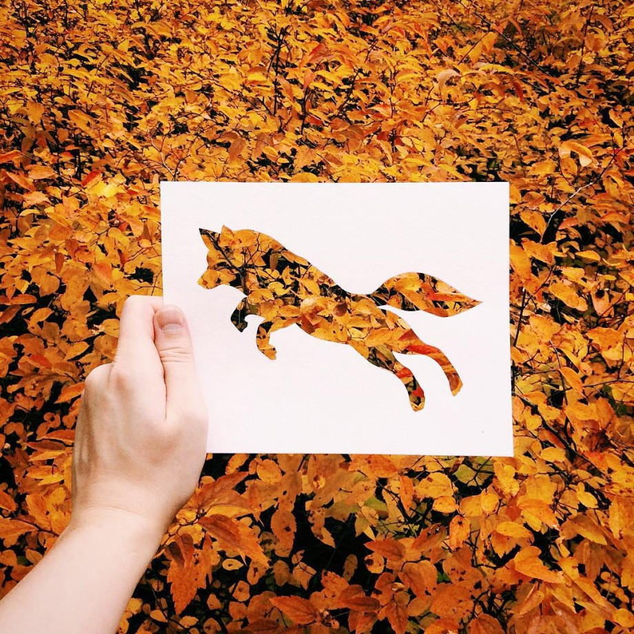 silhouette-animal-nature-01
